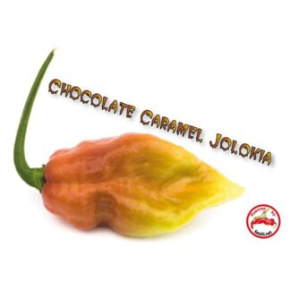 Chocolate Caramel Jolokia