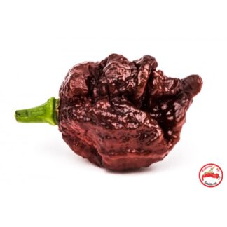 Carolina Reaper x 7pot Douglah
